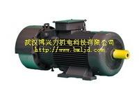 YZRW涡流制动绕线转子bobAPP应用