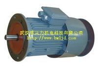 YTW塔机回转用涡流变频调速三相异步电动机