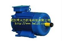 YZ起重及冶金用三相异步电动机