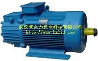 YZR起重及冶金用三相异步电动机