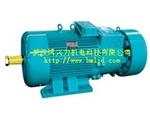 YZRDW涡流制动绕线转子双速三相异步电动机