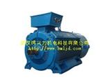 YZP500起重及冶金用变频调速三相异步电动机