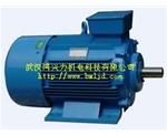 YZP起重及冶金用变频调速三相异步电动机