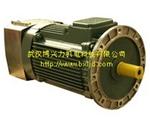 YZEJ施工升降机用电磁制动三相异步电动机