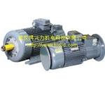YZR系列起重及冶金用绕线转子三相异步电动机